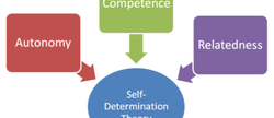Self-determination theory at GDC